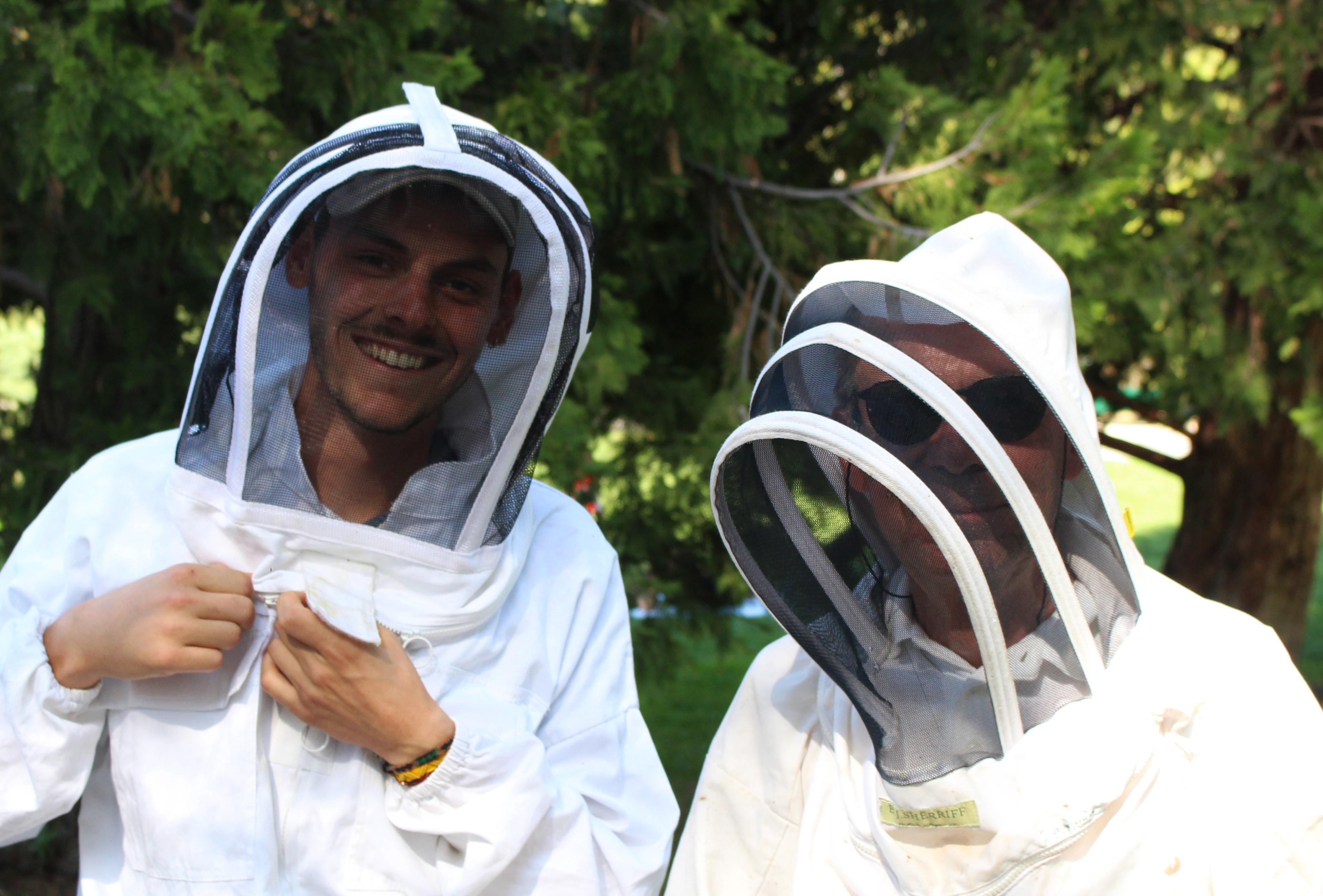A Paris, les ruches prennent leur envol